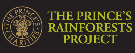 rainforestsos.org