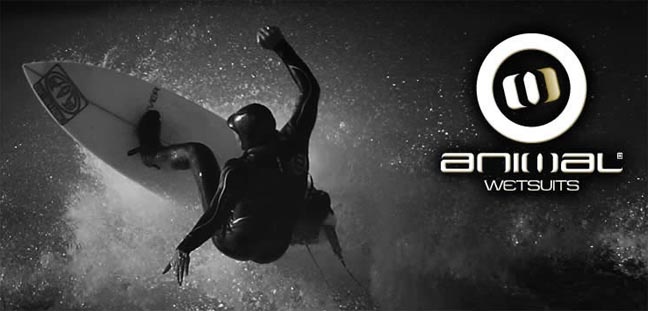 Animal Online Store Launches New Wetsuit Range
