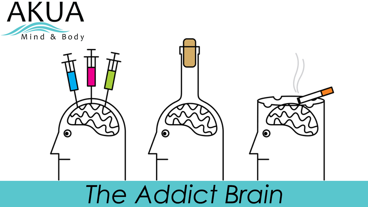 The Addict Brain – Science of Addiction New YouTube Video