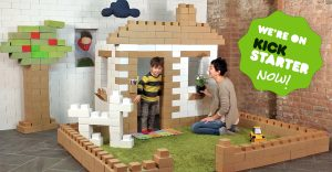 Edo. Giant cardboard blocks to build anything.