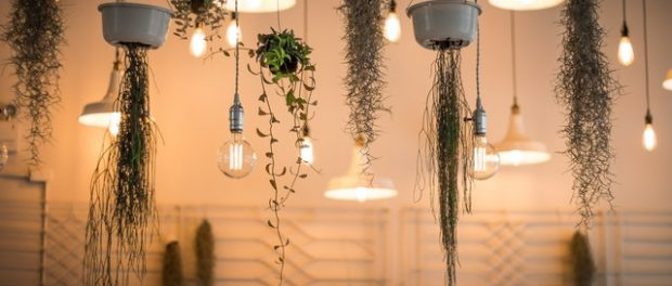 Global Lighting Product Market Size, Share, Growth, Trends and Forecast to  2021 – Express Press Release Distribution