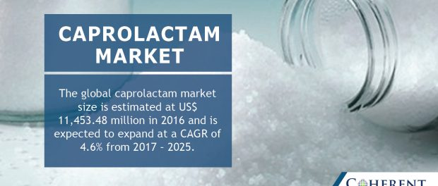 global caprolactam market San francisco, sept 8, 2015 (globe newswire) -- global caprolactam market is expected to reach usd 1530 billion by 2022, according to a new report by grand view research, inc rising nylon 6 resin and fiber consumption, on account of increasing demand for electronics is expected to drive the.