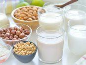 plant based milk industry