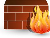 Enterprise Firewall Software market