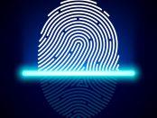 fingerprint sensors industry