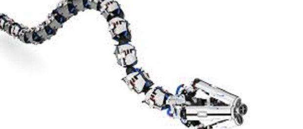 Snake Robots Market