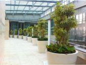 Luwasa - plant hire Melbourne