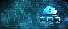 Cloud IDS IPS Market