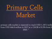 Primary Cells Market