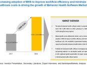 Behavioral/Mental Health Software Market
