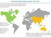 Microsegmentation Market