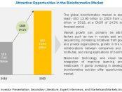 Bioinformatics Services Market