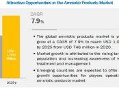 Amniotic Membranes Market