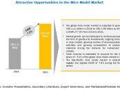 Mice Model Market