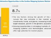 Cardiac Mapping Market