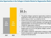 Collagen and Gelatin Market for Regenerative Medicine