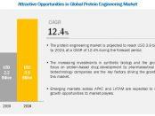 Protein Engineering Market
