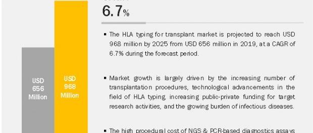 HLA typing for the transplants market