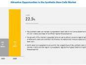 Synthetic Stem Cell Market