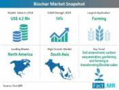 biochar-market-snapshot