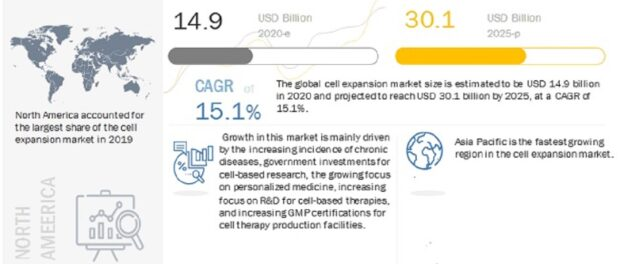 Cell Expansion Market