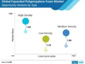 expanded-polypropylene-foam-market-opportunity-analysis-by-type