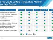 global-crude-sulfate-turpentine-market