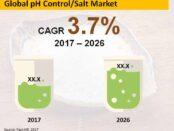 global-ph-control- salt-market