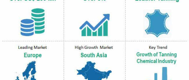 global-sodium-formate-market-snapshot
