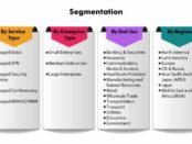 segmentation-managed-network-services-market-1