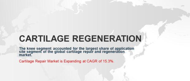 Cartilage Repair Market