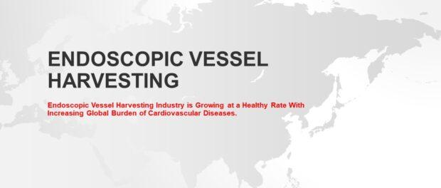 Endoscopic Vessel Harvesting Market