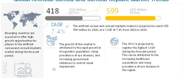 Artificial Cornea and Corneal Implant Market