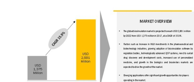 Biosimulation Market