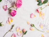 Types of Roses- CosmeaGardens Comes Up With An Exclusive Floral Collection of Roses Varieties At a Low Price.
