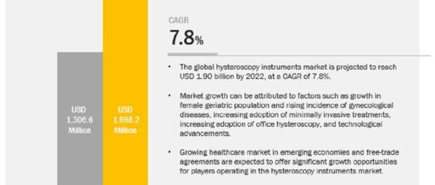 Hysteroscopy Instruments Market