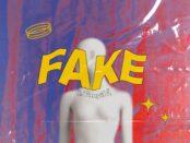 Cover art of FAKE