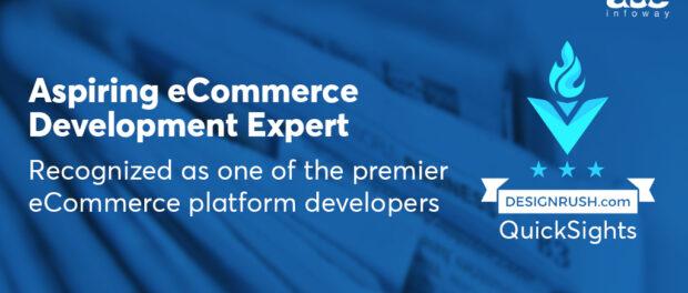Website Development Services, web development company - Ace Infoway