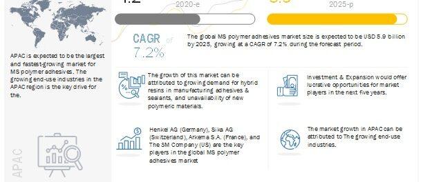 MS Polymer Adhesives Market, MS Polymer Adhesives
